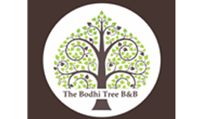 THE BODHI TREE BNB, SHIMLA
